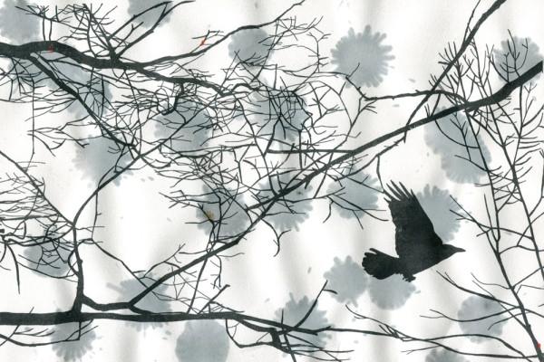 8. März 2015 Im Botanischen Garten in Brüglingen bei Basel hat es im Winter viele Krähen. Ich freue mich, für einmal alle Farben aus meiner Zeichnung weglassen zu können – denn Farben hat es an diesem Tag keine hier.